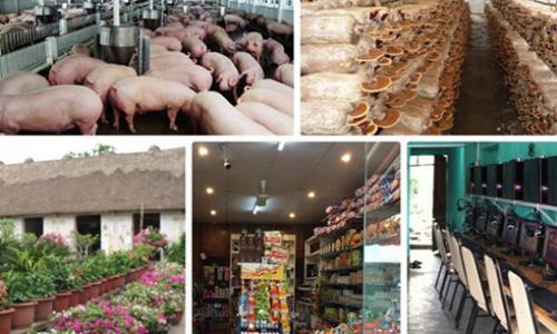 """Những ý tưởng khởi nghiệp """"ăn ra làm nên"""" ở nông thôn"""